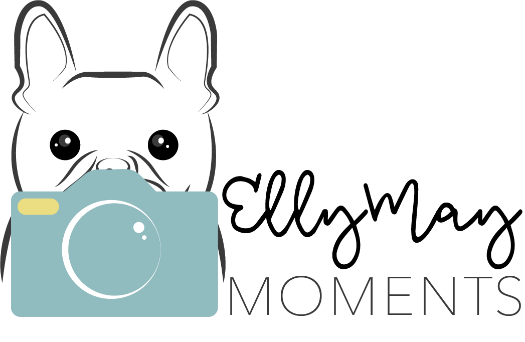 Elly May Moments | Kansas City Pet Photography