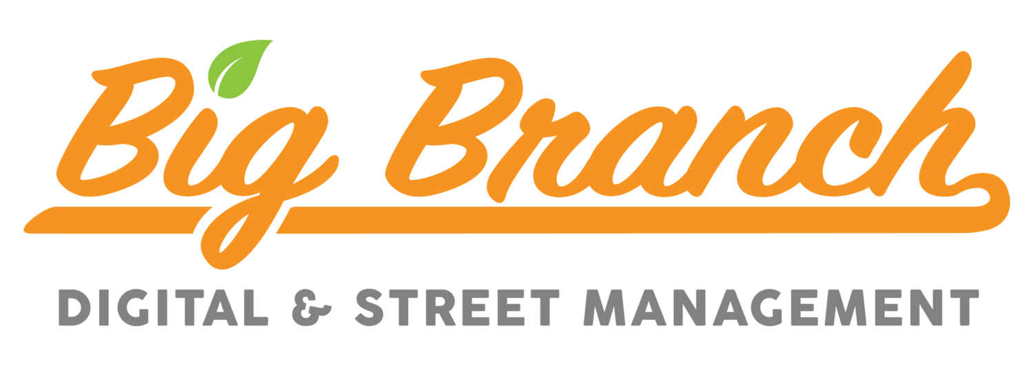 Big Branch - Digital & Street Management