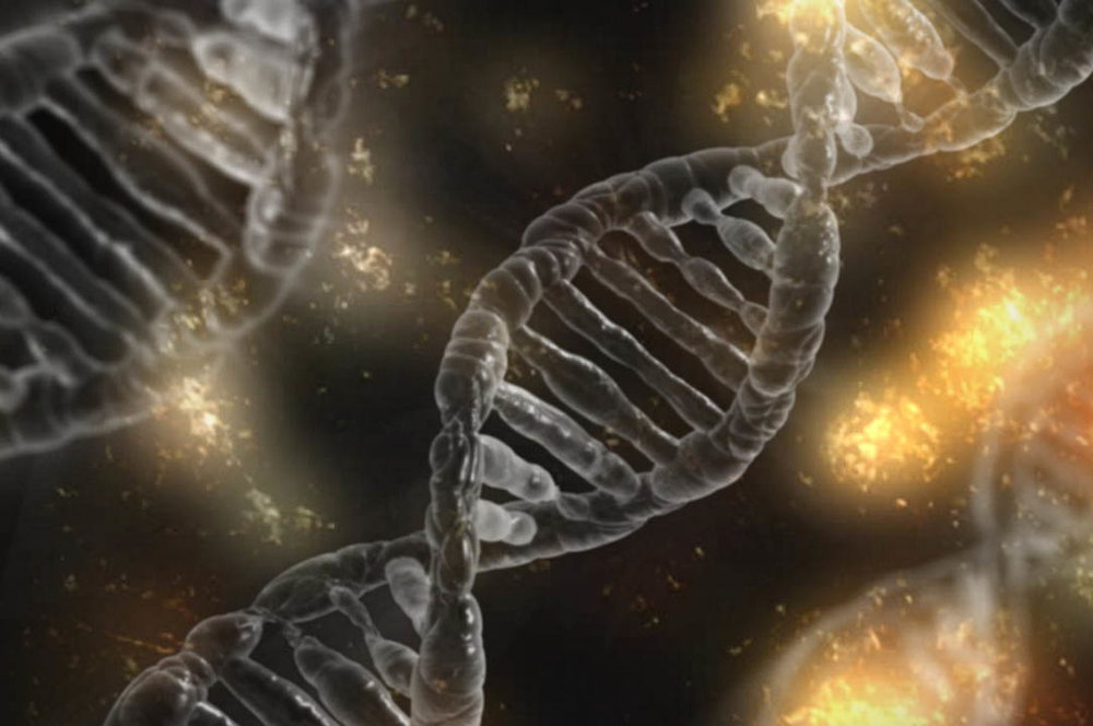 PERSONALIZED ANDDNA-BASED MEDICINE -