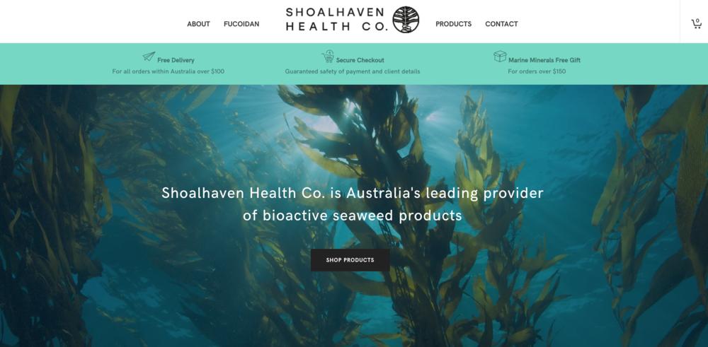 Shoalhaven Health Co  - web design, build &SEO.