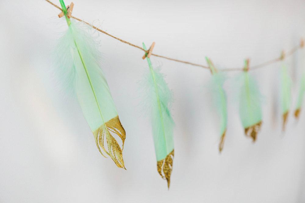 feather3.jpg