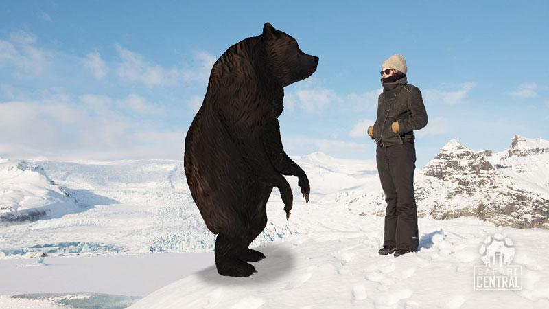 SafariCentral_ar_animalheroes_bear_S.jpg