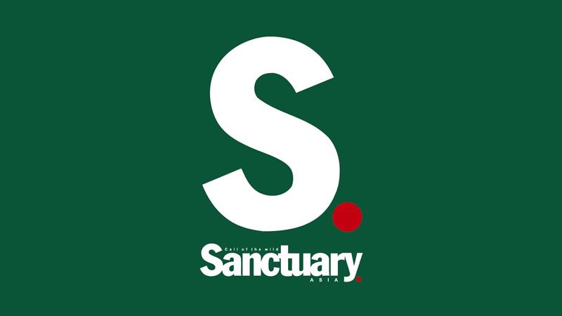 sanctuary_logo.jpg