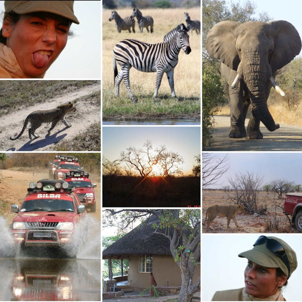 easymomswissmade_marie_biondini_krugernationalpark_donnavventura_rete4_mediaset_programmatv_viaggiare_africa_sudafrica.foto010