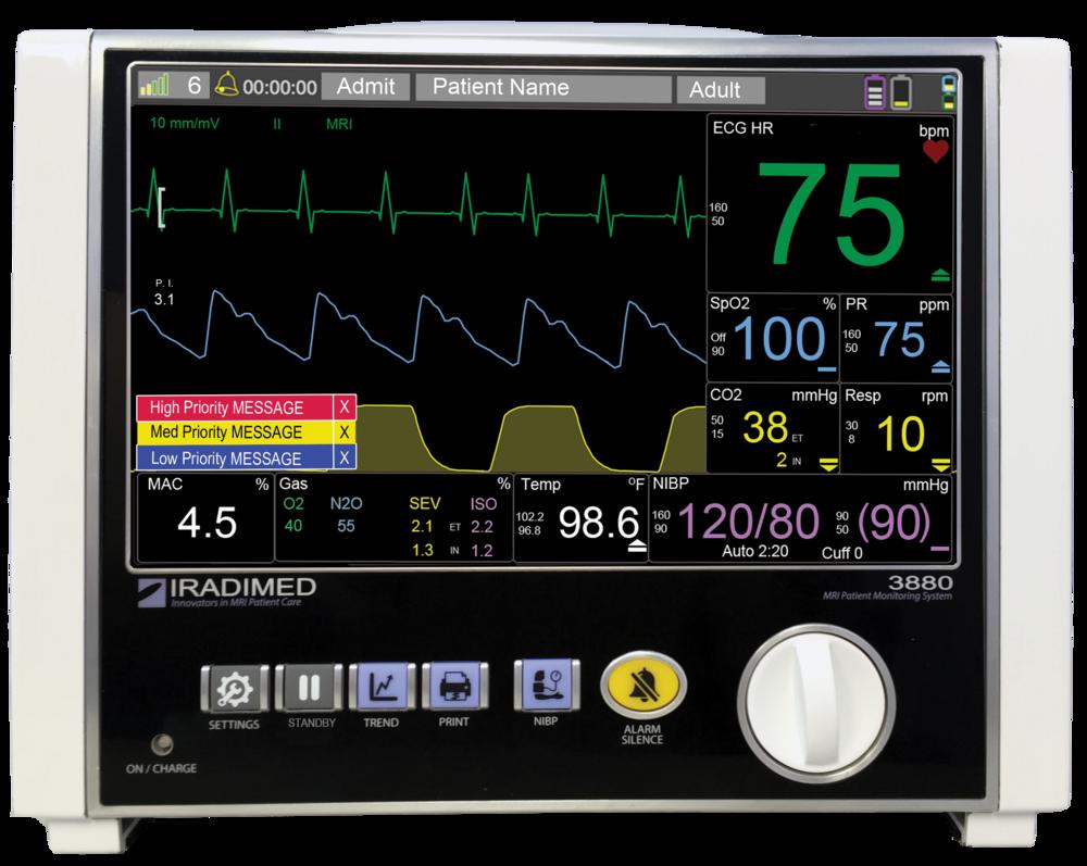 3880 Non-Magnetic MRI Monitor