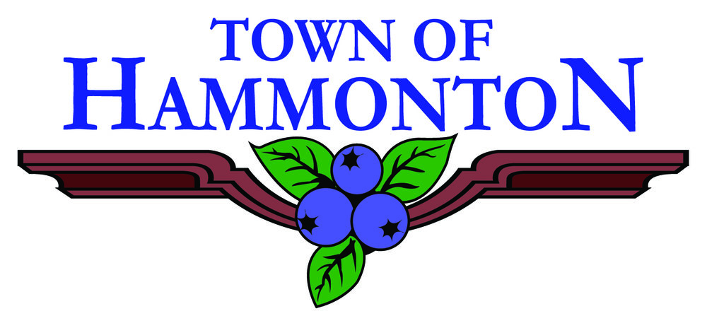 Town Logo2.jpg