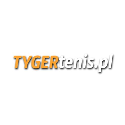 rc - logo - tyger.png