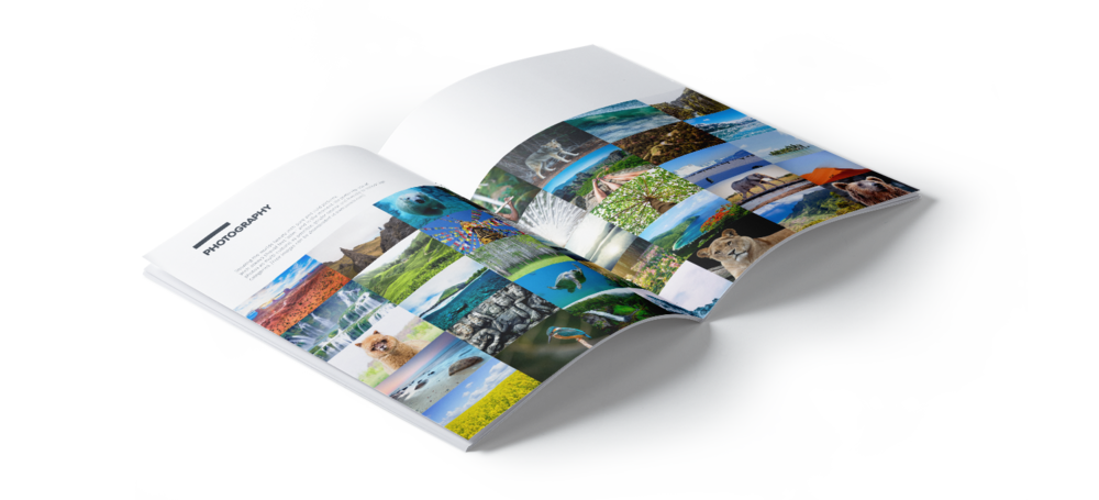Brand Book care for destinations