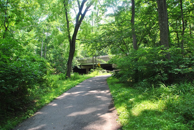 Pennypack park photo gallery - Check out what makes Pennypack so beautiful!