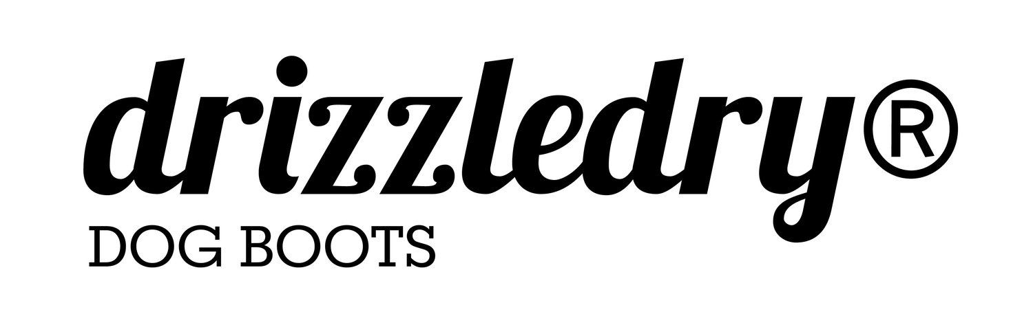 drizzledry dog boots