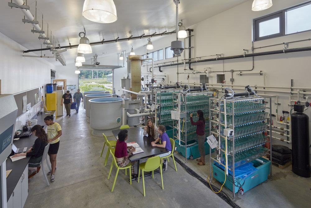 Aquaculture Lab | Field Lab