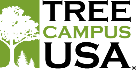Tree-Campus-USA.png