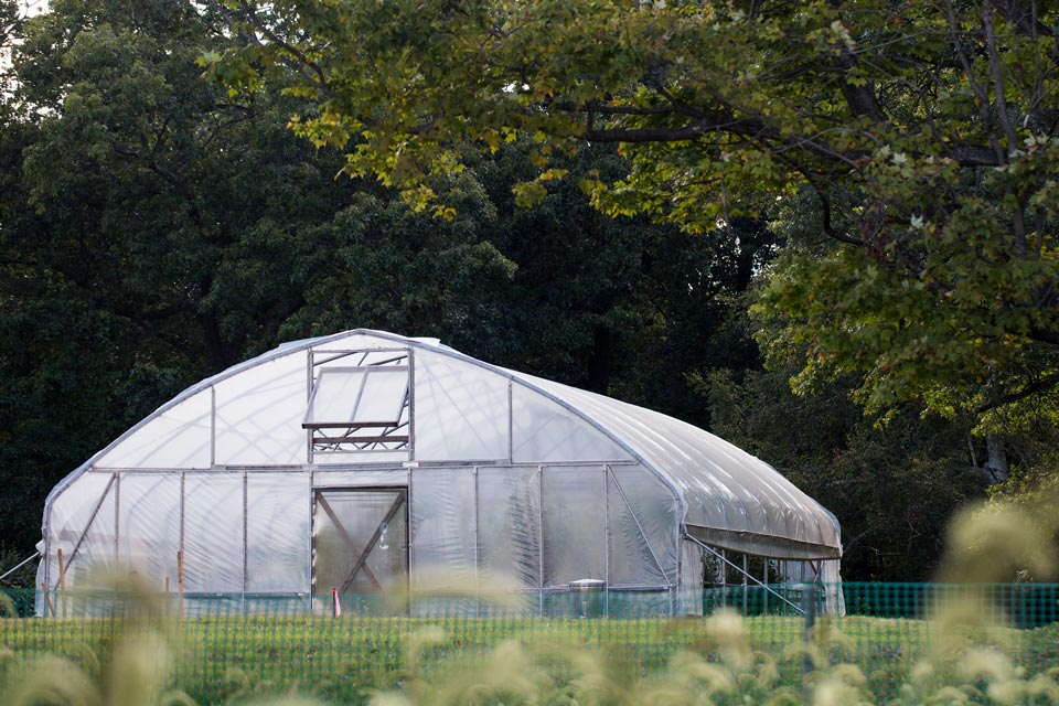 hoop-house-ext.jpg