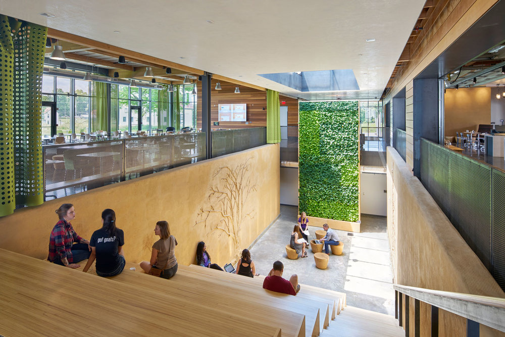 Barazzone Center | Green Wall
