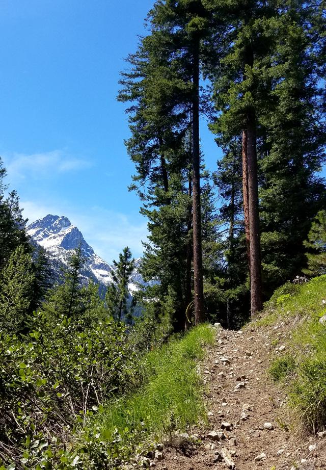Twisp River Trail.jpg