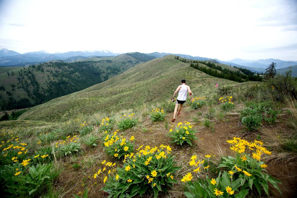 bDMILn_sun-mountain-50k.jpg