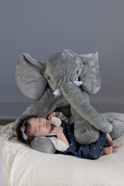 BabyParker-24.jpg