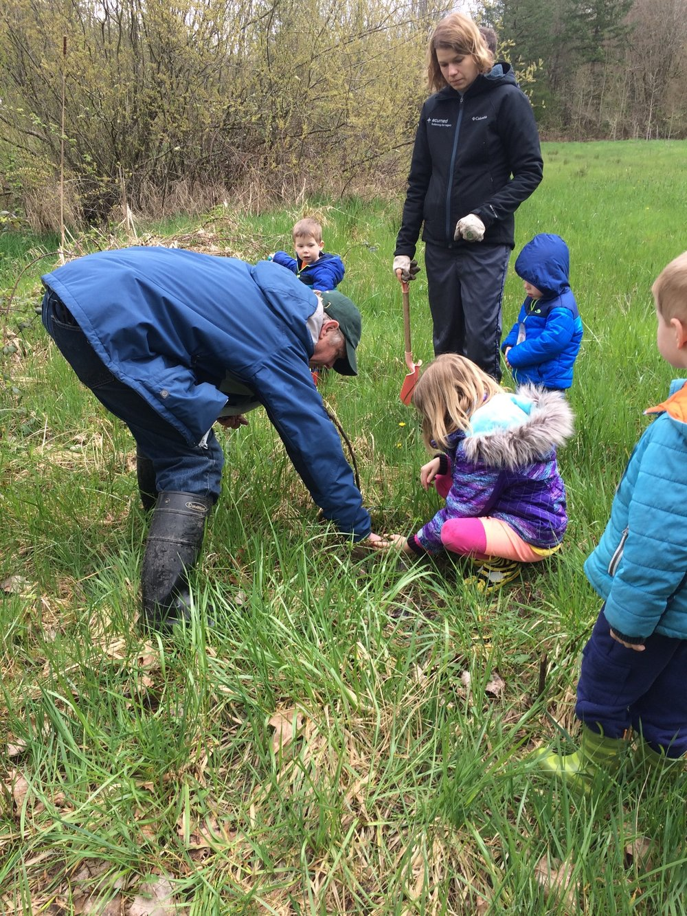 Julie Dausman and her children help ward off invasive reed canary grass by planting pussywillow branches.