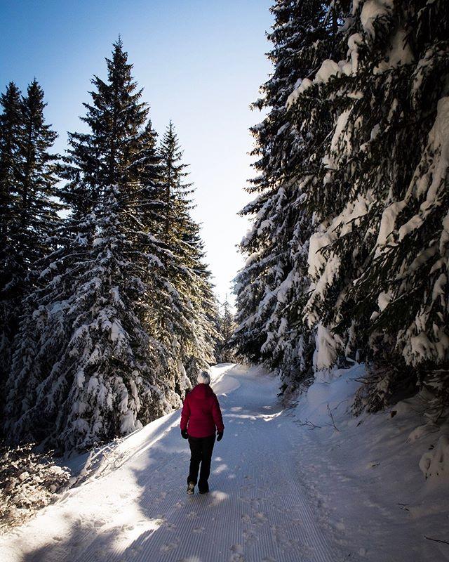 Winterwonderland Brambrüesch  #graubünden  #brambrüesch