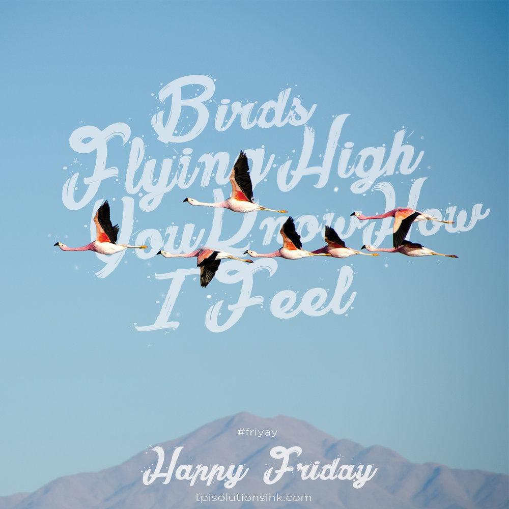FlyingHigh.jpg