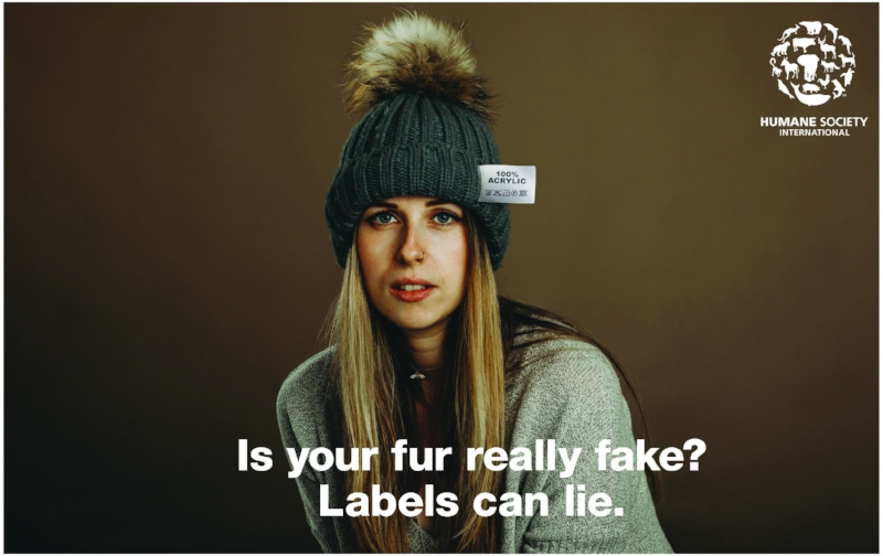 What the fur campaign.jpg