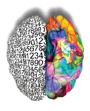 C3 Brain Transparent Background.png