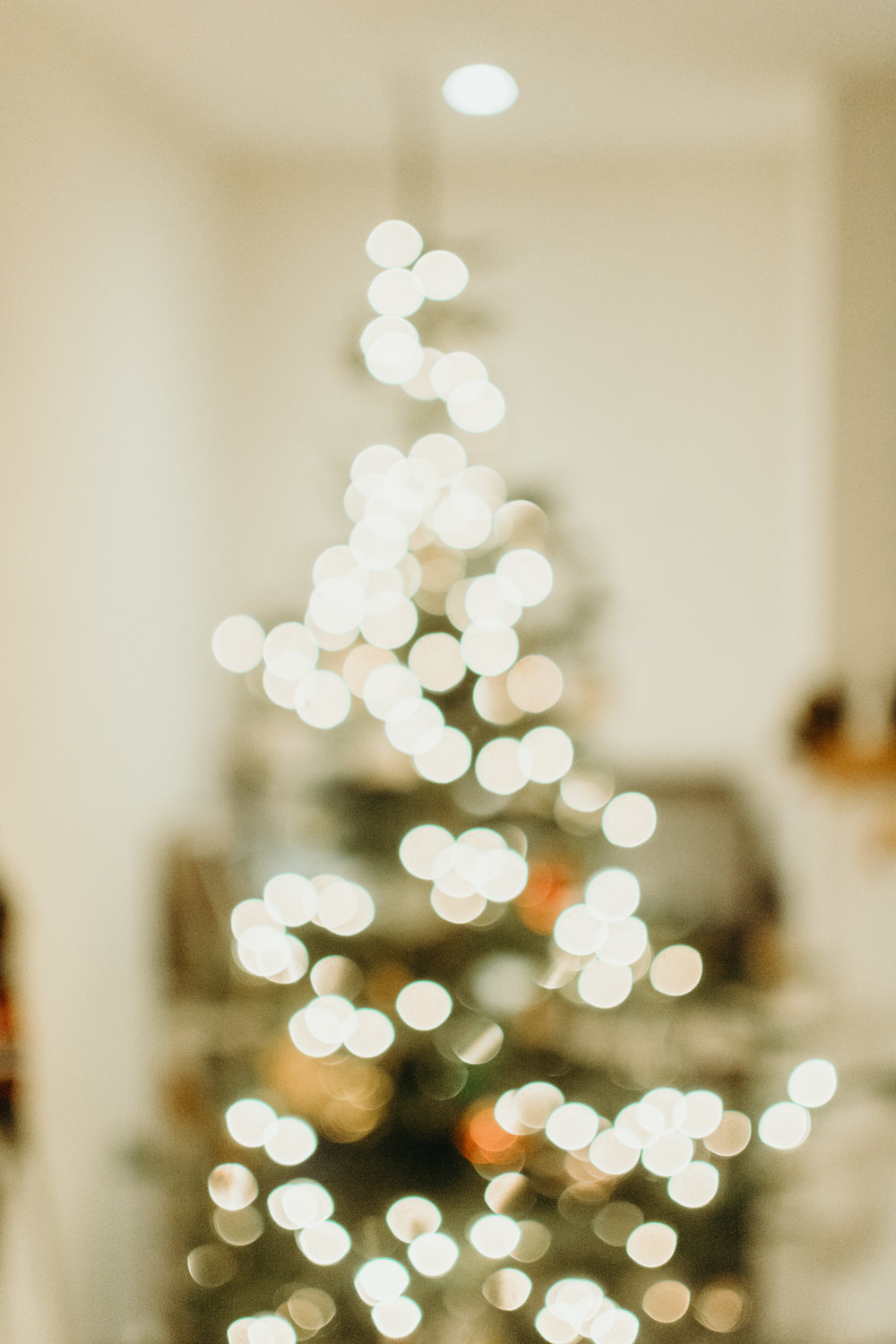 Sustainable Christmas - Madison Jamie Photograhpy - @madisonjoue-1782.jpg
