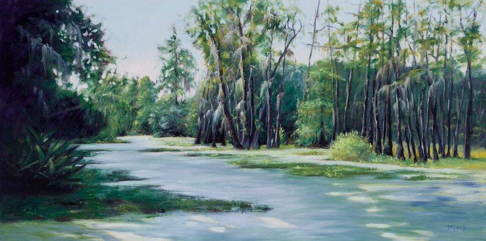"""""""Audobon Swamp""""  Oil on Canvas  24"""" x 48"""""""