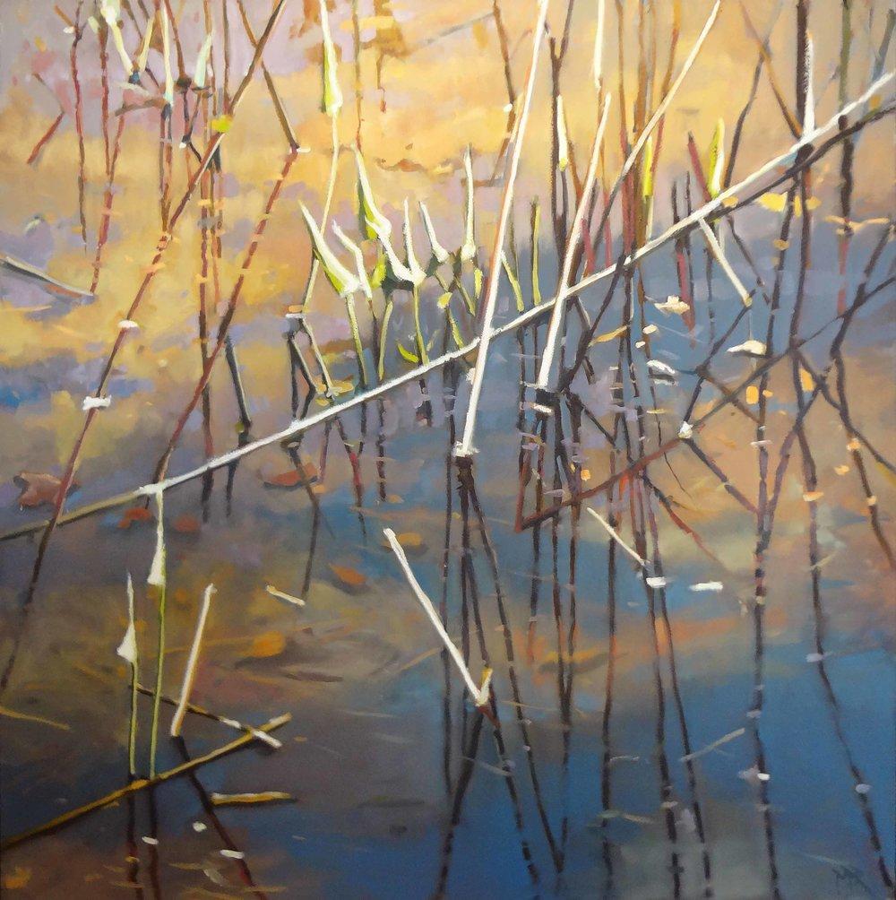 """""""Shallows""""  Oil on Canvas  48"""" x 48"""""""