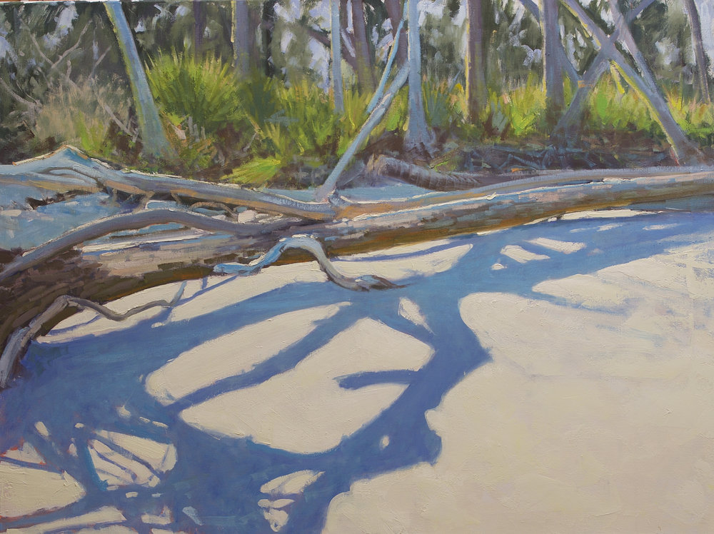 """Shadow Of The Fallen – Hunting Island""  Oil on Linen  30"" x 40"""