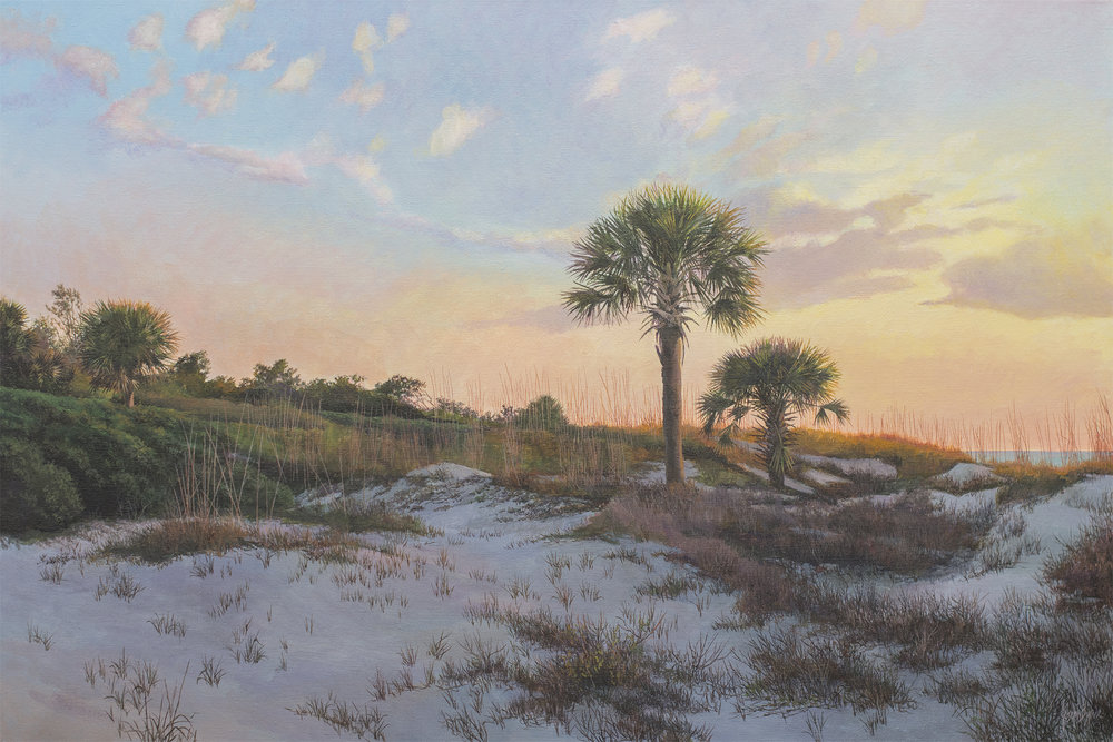 """Morning Glory - Hunting Island"""