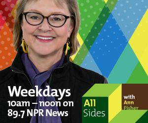 All Siders With Ann Fischer | NPR (2017)