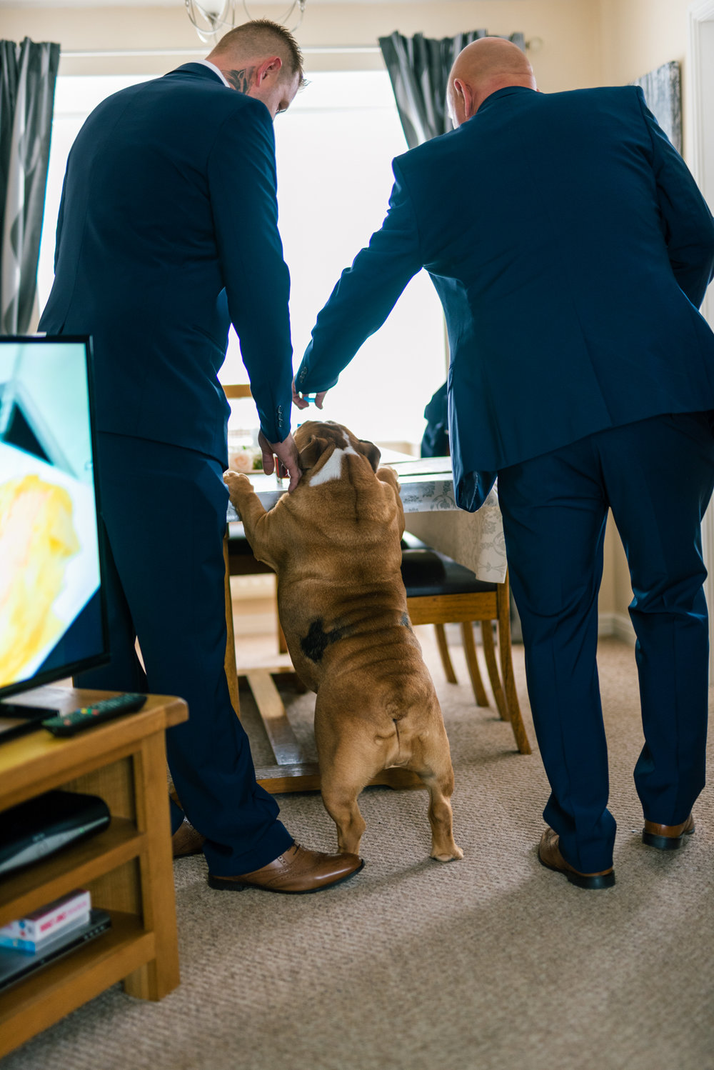 dog joins the groom and the best man