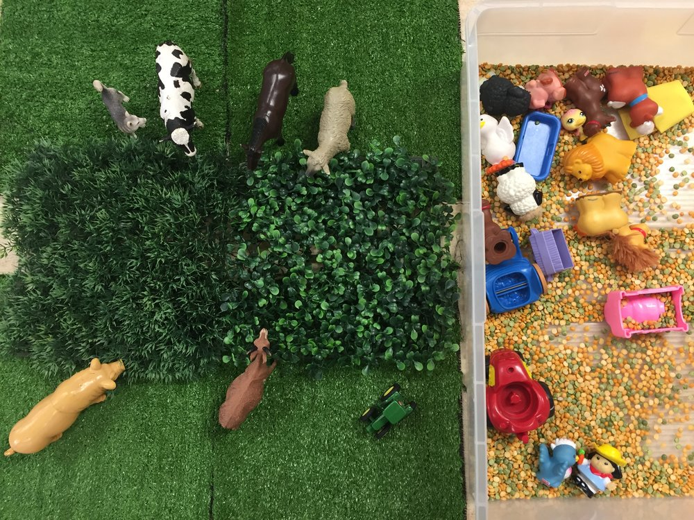 I thought this center was fun because it includes two ways for students to play. It is easy to create as well using a piece of fake grass, some dried lentils and whatever animals or farm toys you have in the classroom. You could also use corn kernels or some yarn for fake hay. If you do not have access to farm toys you could do a jungle theme, dinosaurs, etc just by changing the materials.