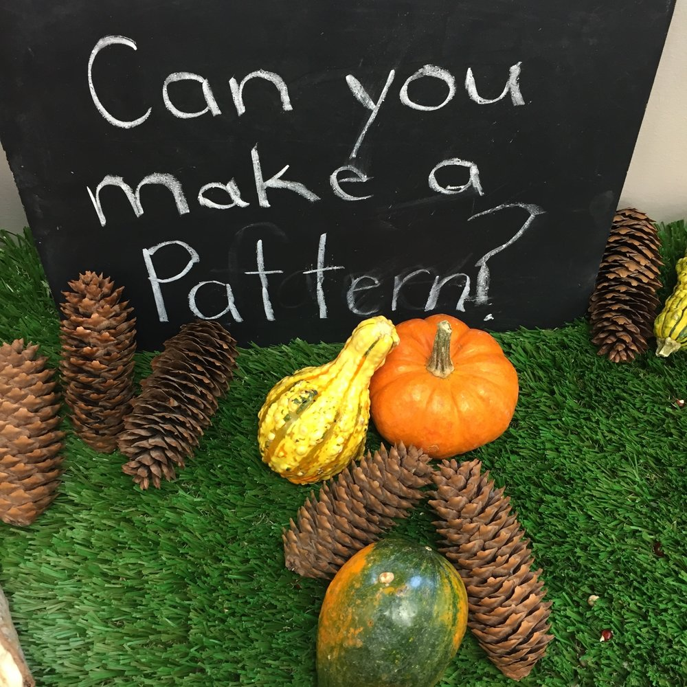 I love to use natural materials in the classroom. The students love the real items and they provide a unique sensory experience. The pumpkins and gourds can go rotten fast so they need to be monitored frequently.The chalkboard is great because you can erase and write out new provocations whenever needed.