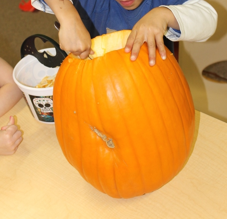 Cleaning out a pumpkin is a fun and slimy sensory experience and it is perfect as a learning tool to encourage observations and discussion.