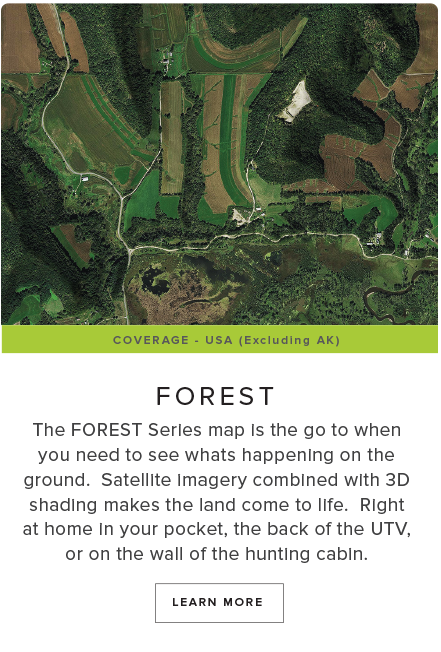 FOREST-Style-Scroll-white.png