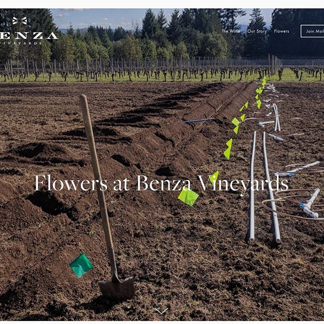 A lot of work from Greg & Ash Benza to establish their cut flower farm