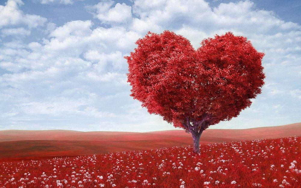 PIC HEART.jpg