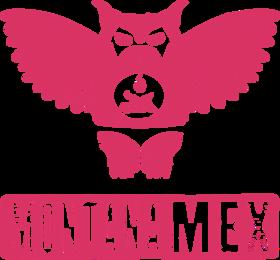 montanamex_client03.png