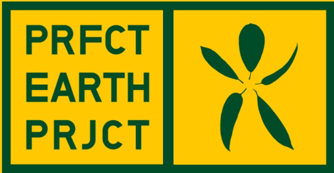 Prfct Earth Icon.JPG