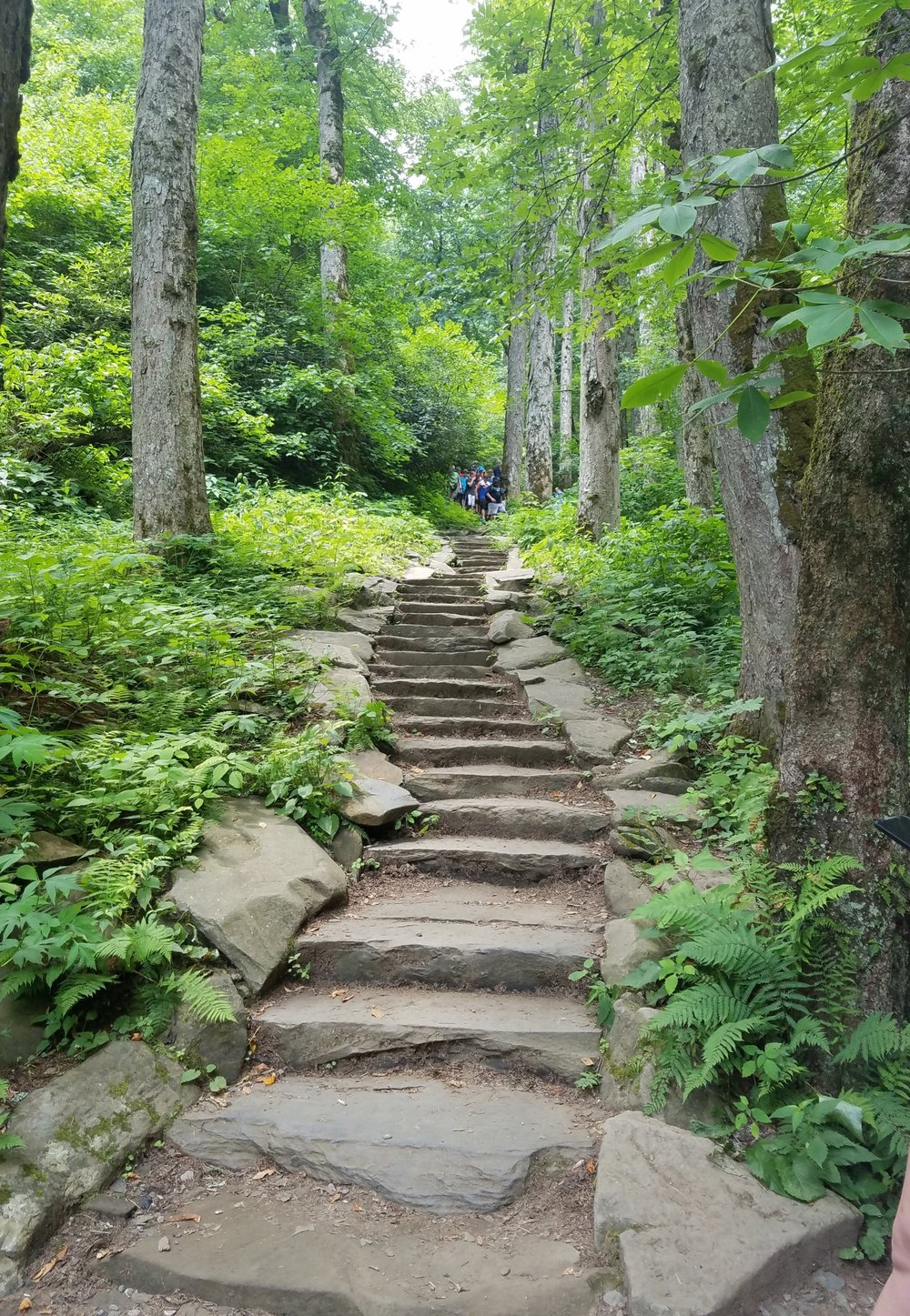 Stone trail.jpg