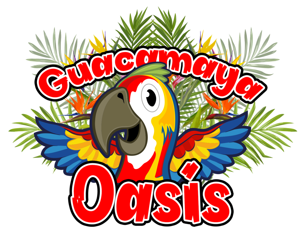 Guacamaya Oasis - Solutions: Website design, Content Creation, Digital Marketing