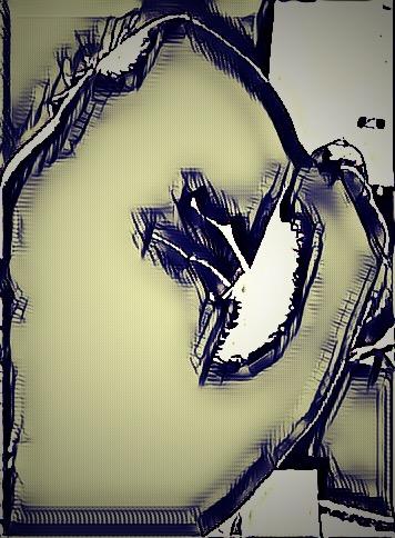 untitled--jim zola.JPEG