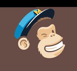 MailChimp - MC_MonkeyReward_05.png