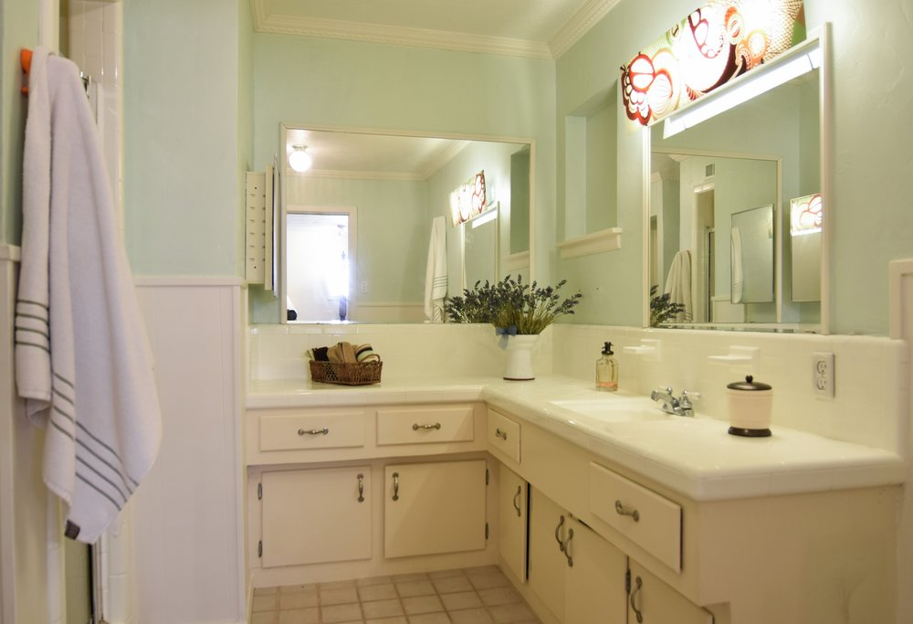 Master Bath 3235 Timberview Rd Dallas TX 75229.jpg