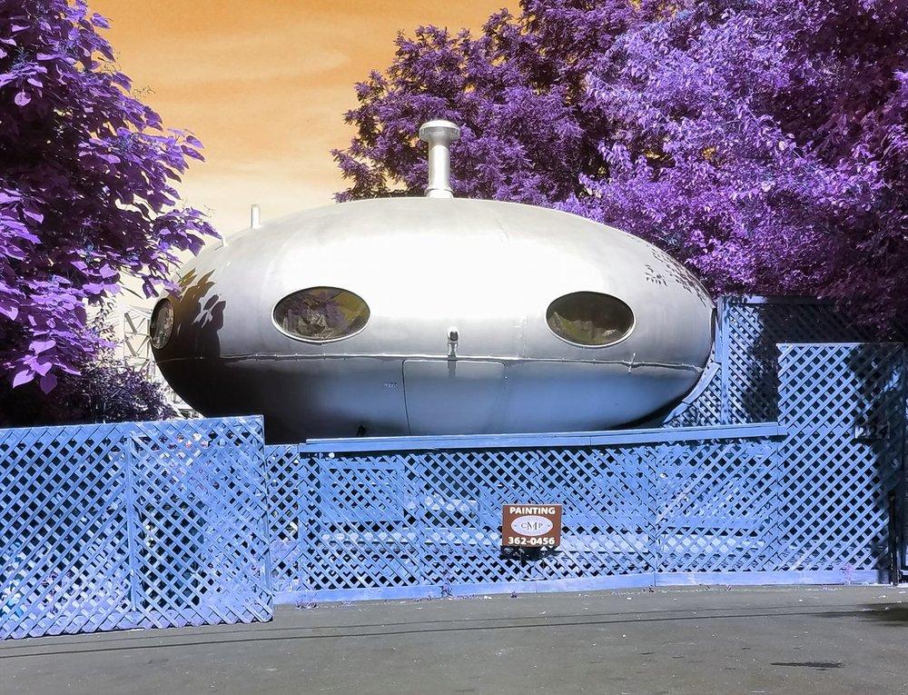 Botany Hills - Flying Saucer.jpg