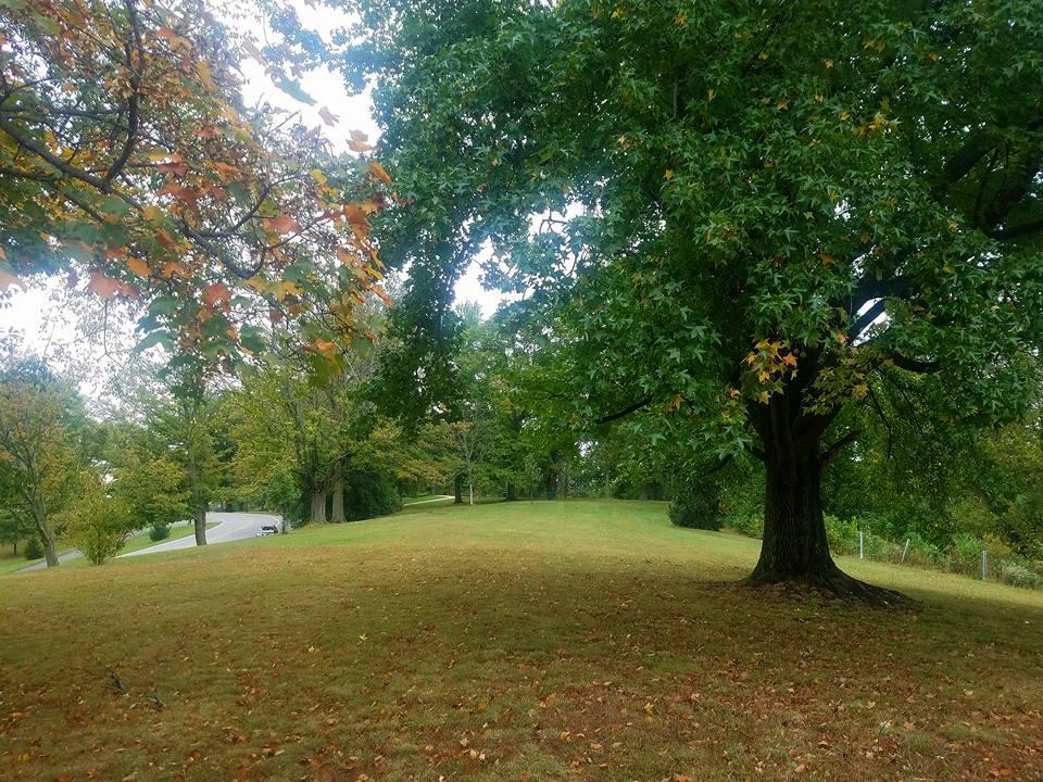 Devou Park - by Rotary Grove.jpg