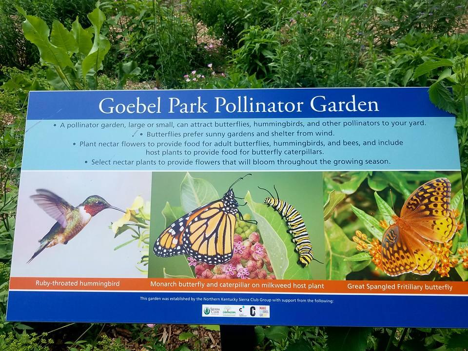 Goebel Park Pollinator Garden.jpg