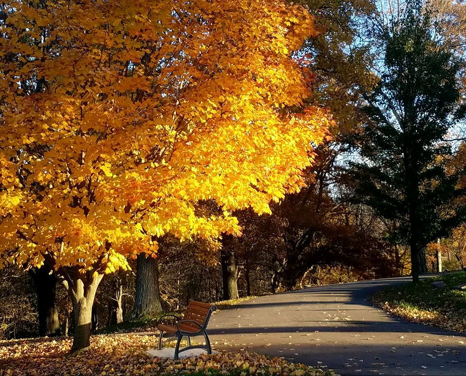 Highland Cemetery Fall Day.jpg
